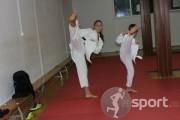 C.S.Cobra Arte Martiale Arad - arte-martiale in Arad | faSport.ro