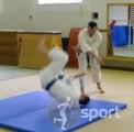 "Clubul de Karate ""SHINGEN"" Cluj-Napoca - arte-martiale in Cluj-Napoca | faSport.ro"