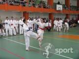 Club Sportiv White Tigers Karate Cluj - arte-martiale in Cluj-Napoca   faSport.ro
