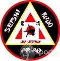 A.S. Seishi Budo - arte-martiale in Arad | faSport.ro