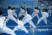Dragonsib Dojo - arte-martiale in Sibiu | faSport.ro