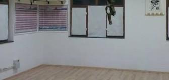 Shaolin WU SHU - arte-martiale in Timisoara