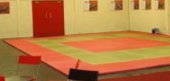 Taekwondo Iasi - arte-martiale in Iasi