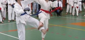 Club Sportiv White Tigers Karate Cluj - arte-martiale in Cluj-Napoca