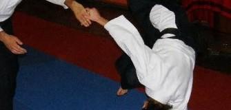 Asociatia Romana de Aikido Aikikai - arte-martiale in Arad