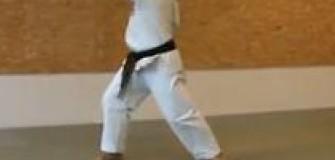 Club Goshin-Ryu - arte-martiale in Ploiesti