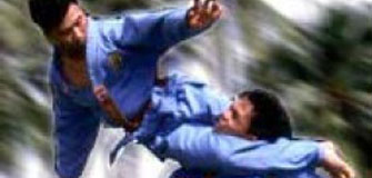 Vovinam Viet Vo Dao - arte-martiale in Vaslui