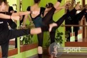 Ars Nova - dans-sportiv in Oradea | faSport.ro