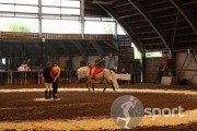 Asociatia Sportiva Galopp - echitatie in Satu-Mare   faSport.ro