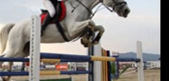 Sport Horse - echitatie in Campina