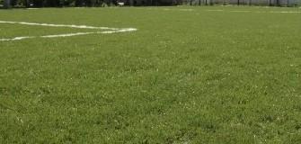 Arena Temerarii - fotbal in Bucuresti