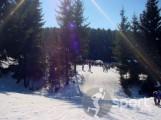Partia de ski Bran-Zanoaga - ski in Bran | faSport.ro