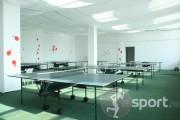 Sala de tenis - tenis-de-masa in Iasi | faSport.ro